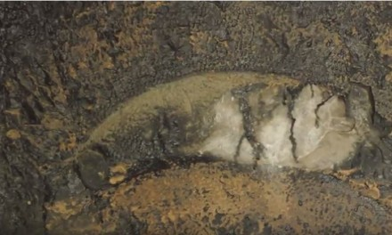 WATCH: Amazing exploration of early Christian tombs in Upper Galilee