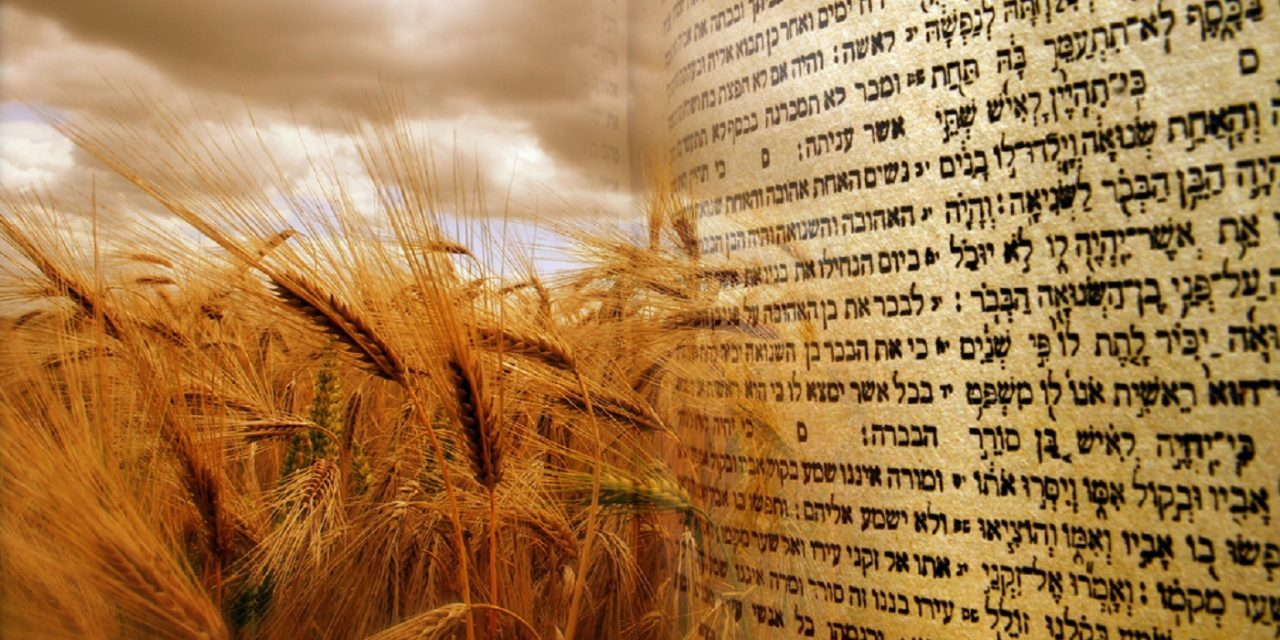 """""""Shavuot"""" – What Christians should know about the Jewish festival"""