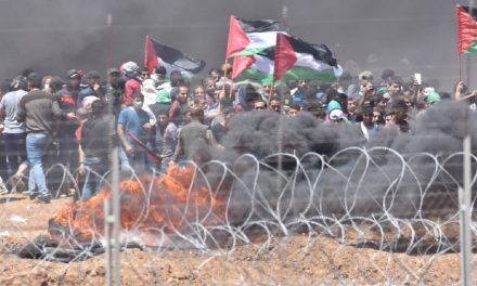 Hamas is responsible for Gaza deaths: What the media is NOT telling you