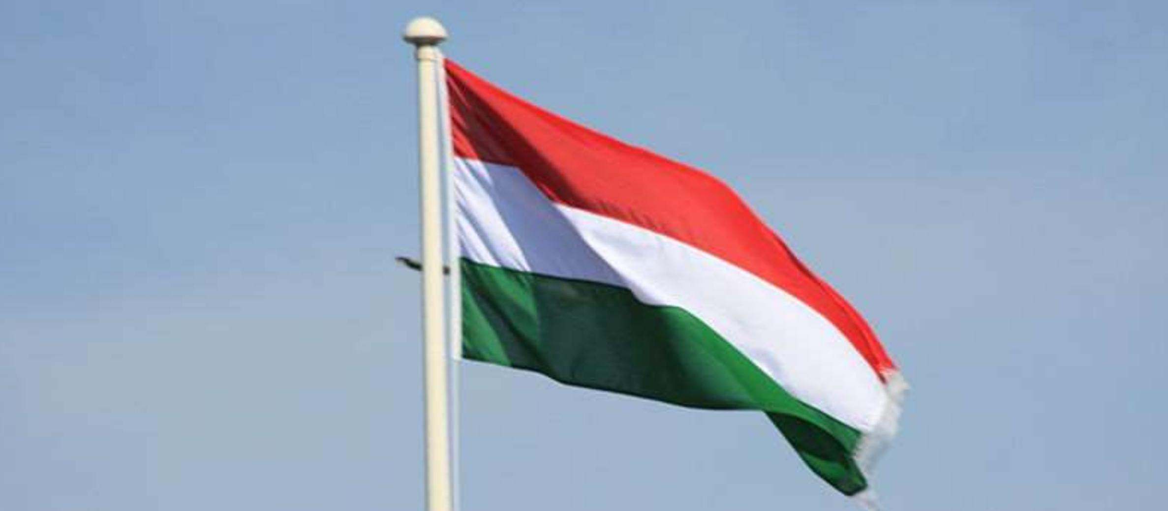 Hungary: Calls to stop planned statue of wartime Nazi supporter