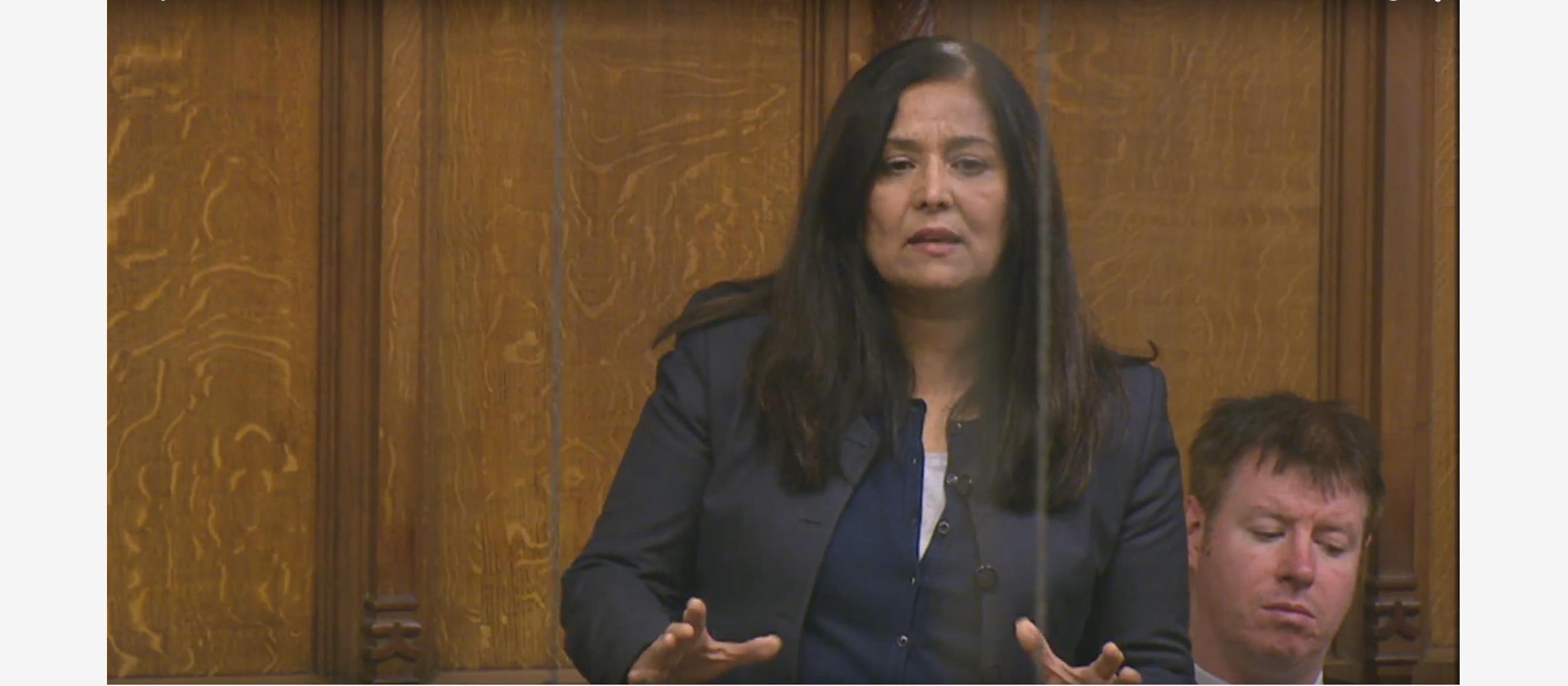 """MP says """"Palestinian-Israel conflict"""" is """"key"""" in ISIS airstrike debate"""