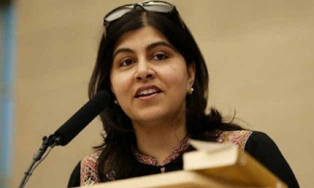 "Baroness Warsi: ""Prosecute British volunteers in the IDF"""