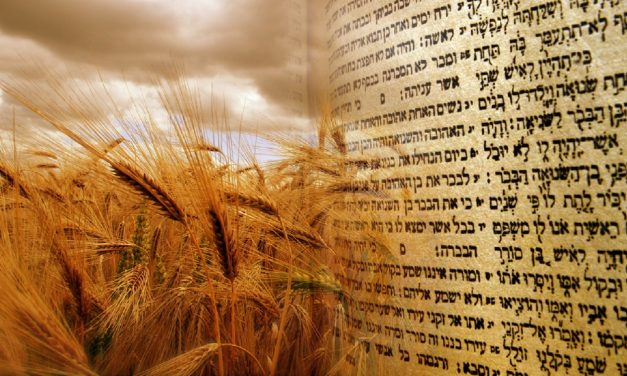 """Shavuot"" – What Christians should know about the Jewish festival"