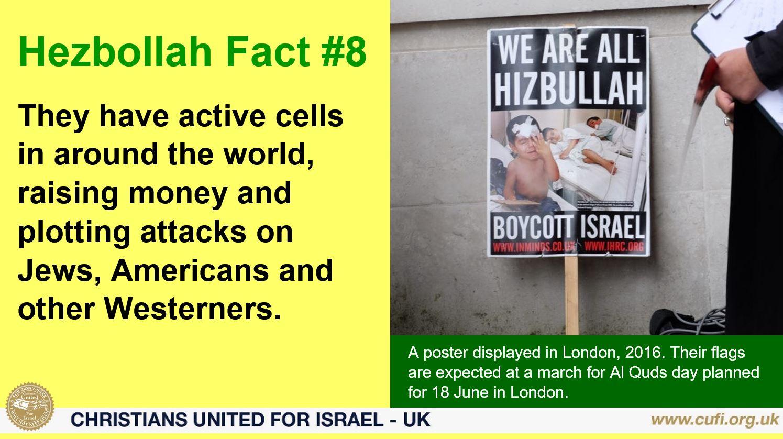 Hezbollah 8