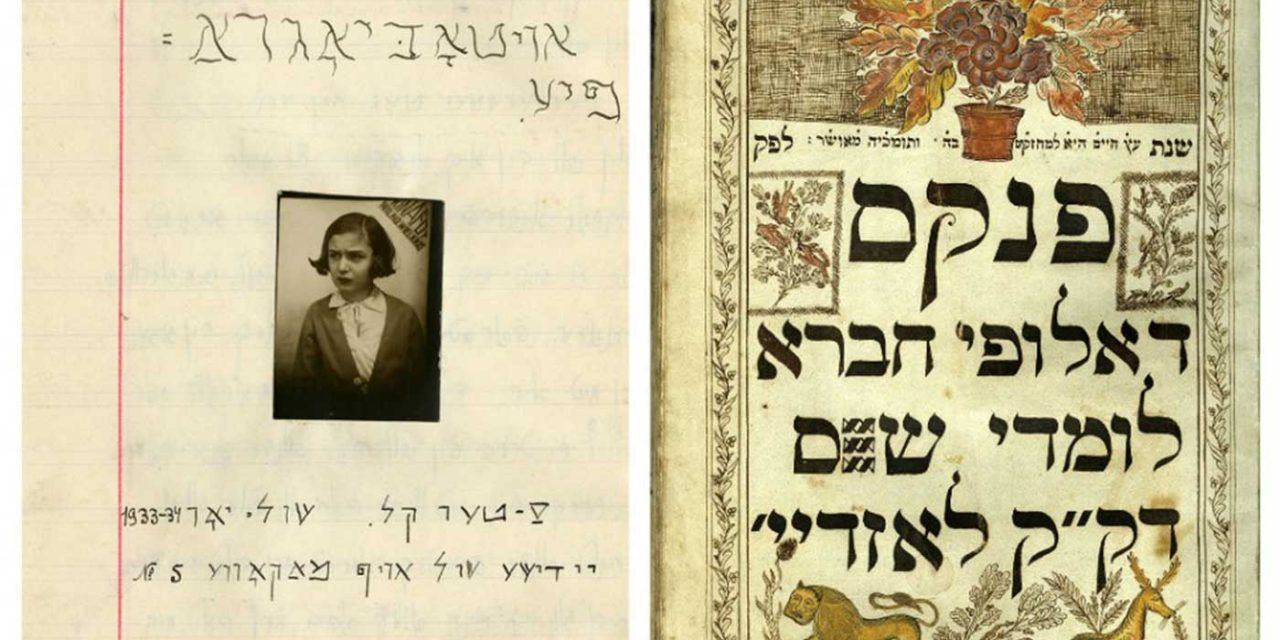 170,000-page collection of Jewish documents hidden during Holocaust discovered in Lithuania