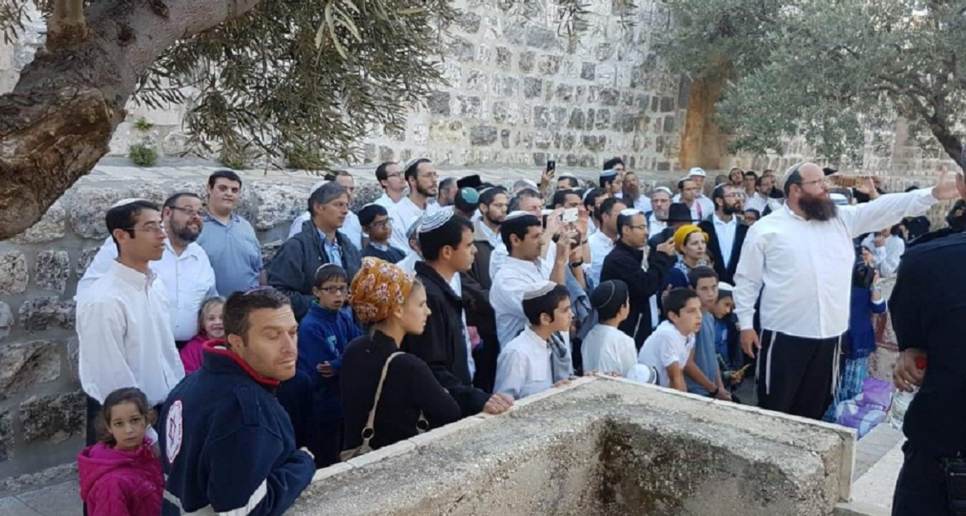 """Jew Detector: Jordan Condemns Jews Visiting Temple Mount As """"provocation"""