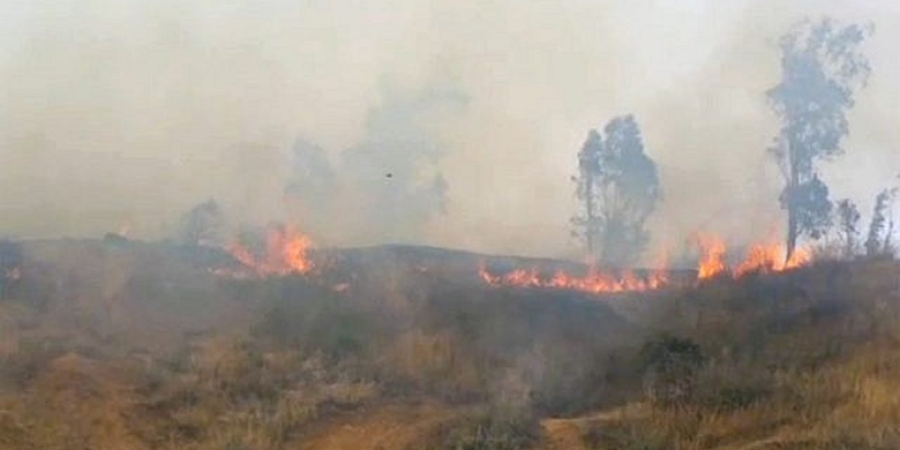 "WATCH: Palestinian ""Fire kites"" light destructive wild-fire near Israel border"