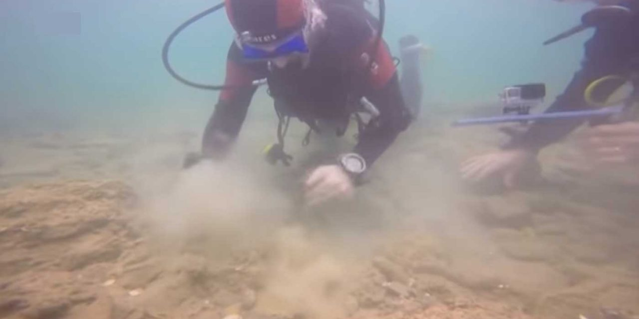 WATCH: Israeli divers work to protect ancient relics on ocean floor around gas field