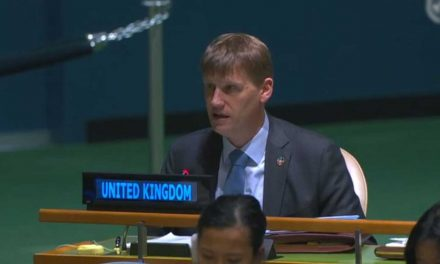 UK votes in favour of Palestinians having more power at UN to lead largest country bloc in 2019