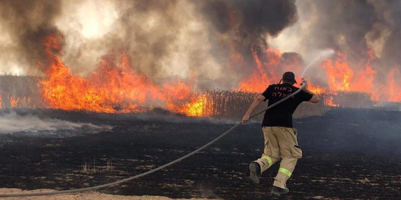 "As wildfires spread in Israel, Gazan terrorists send ""arson balloons"" across border burning over 80 acres"