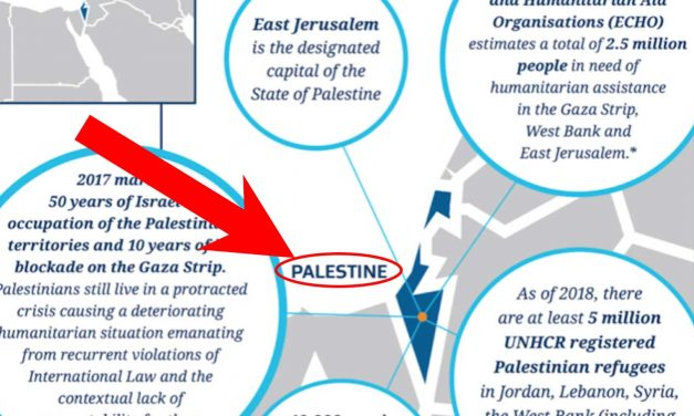"New Zealand government website wipes Israel off map, replaces it with ""Palestine"""