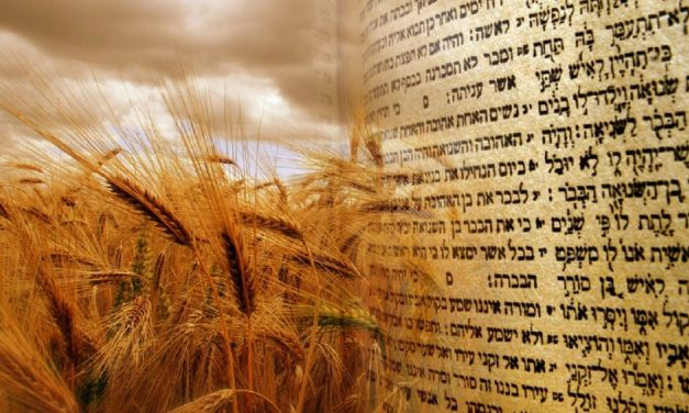 Shavuot and Pentecost – What Christians should know about the Jewish festival