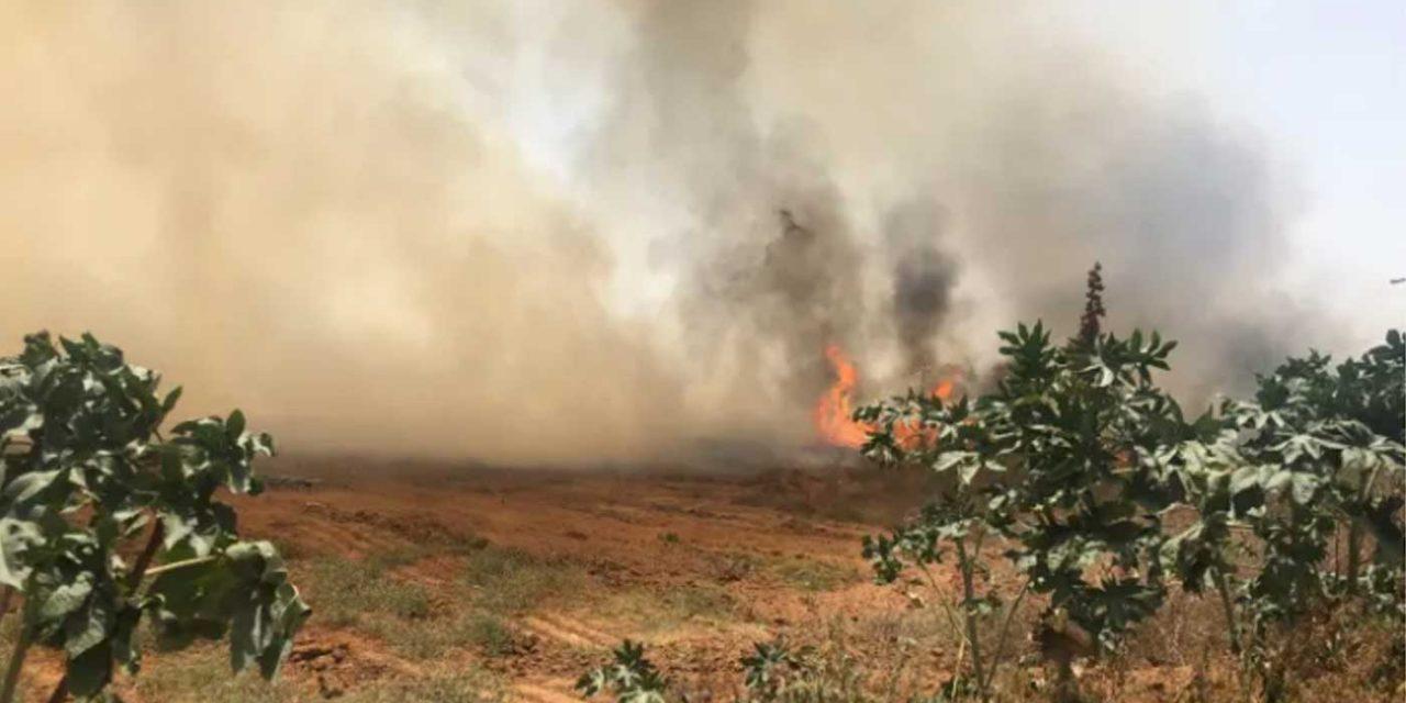 Palestinians resume arson terror at southern Israel