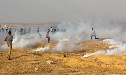 Seven Palestinians injured by terrorist rockets fired from Gaza
