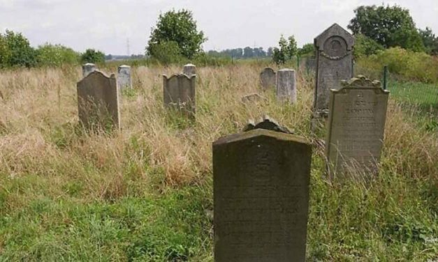 Polish students clean local Jewish cemetery, learn to read Hebrew gravestones