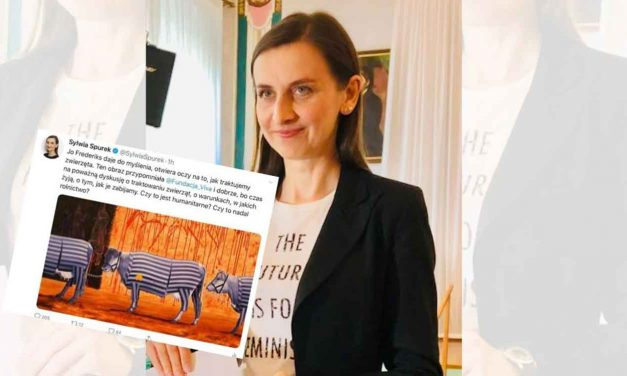 MEP refuses to apologise over image of cattle in Holocaust victim uniforms