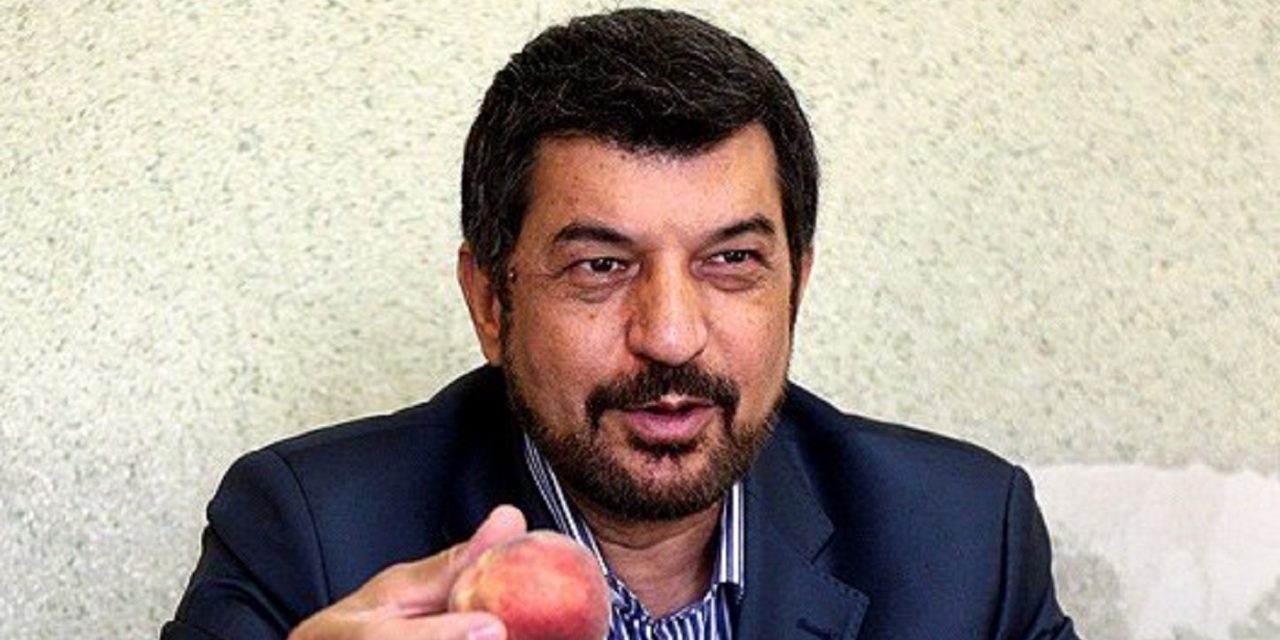 Iranian TV presenter arrested for accusing regime of Coronavirus cover-up