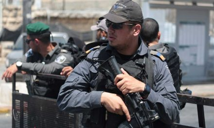Jerusalem police shoot and wound terrorist after stabbing attempt