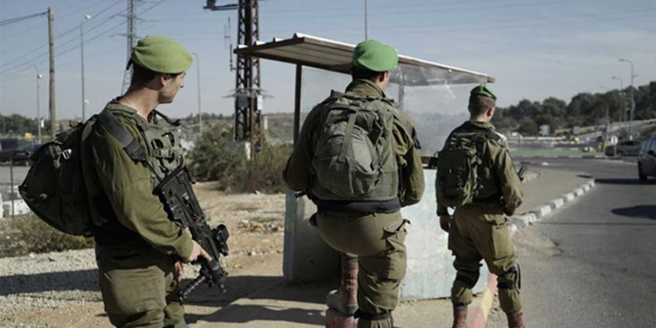 Palestinian terrorist neutralised during axe attack south of Jerusalem
