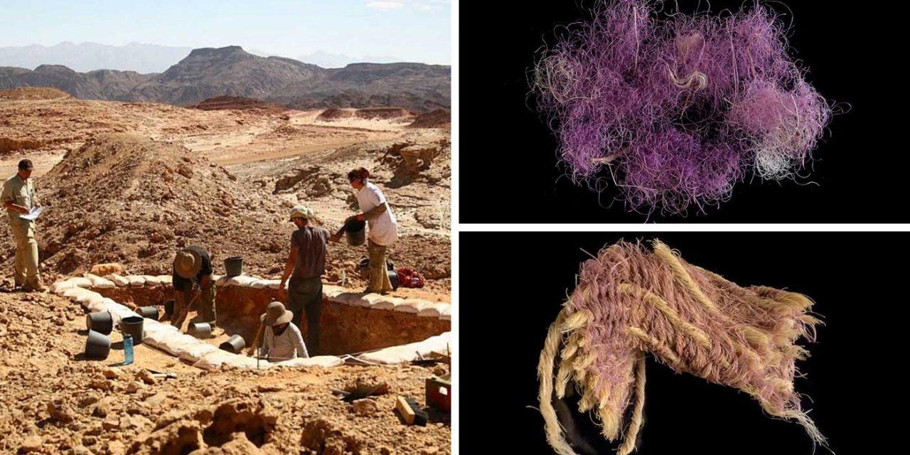 Biblical 'royal' purple dyed cloth found in Israel, dates to King David's era