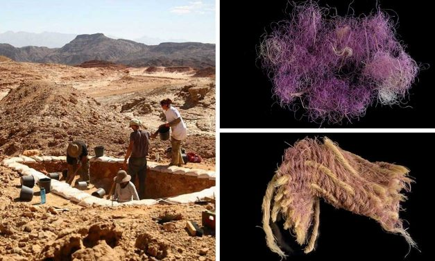 Biblical 'royal' purple dyed cloth found in Israel, dates to King David's era