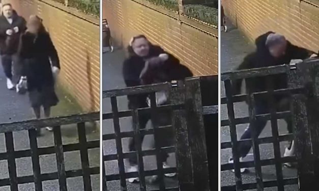London: Shocking attack on pregnant Jewish woman captured on CCTV