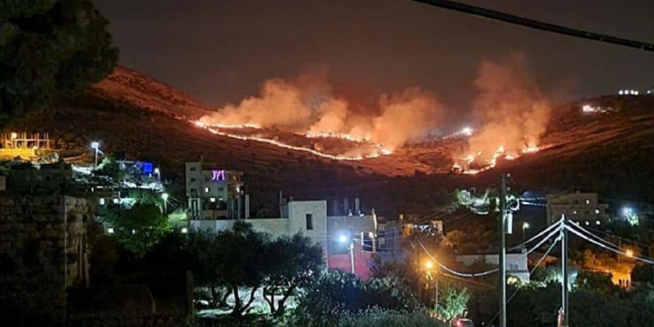 Legal action against NGO after it spread claim Palestinian fields were set on fire