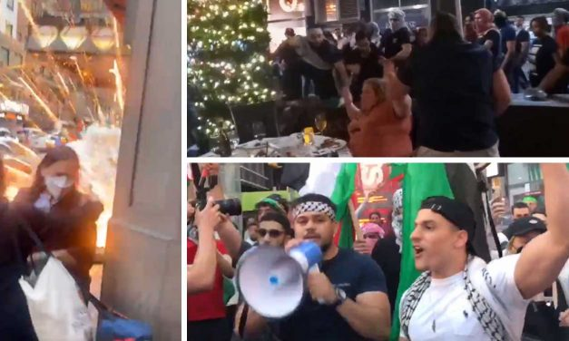Violent attacks on Jews in New York and LA by pro-Palestinian rioters