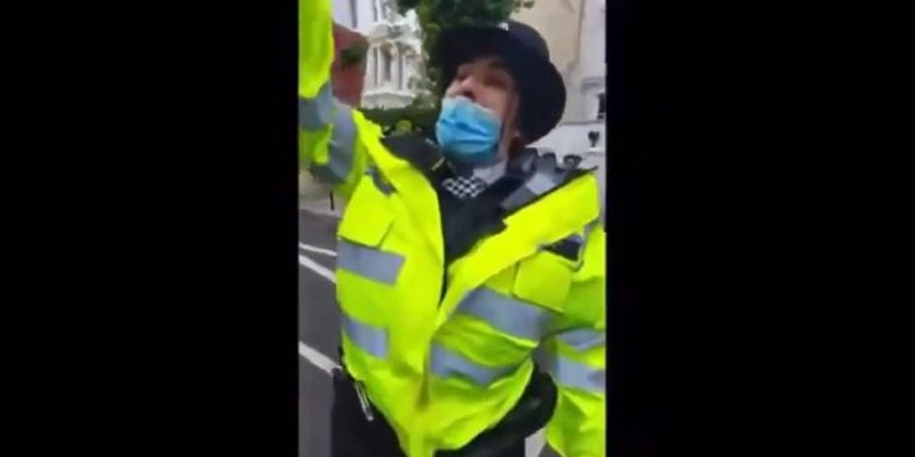 London: Investigation after police officer shouts 'Free Palestine' during protest