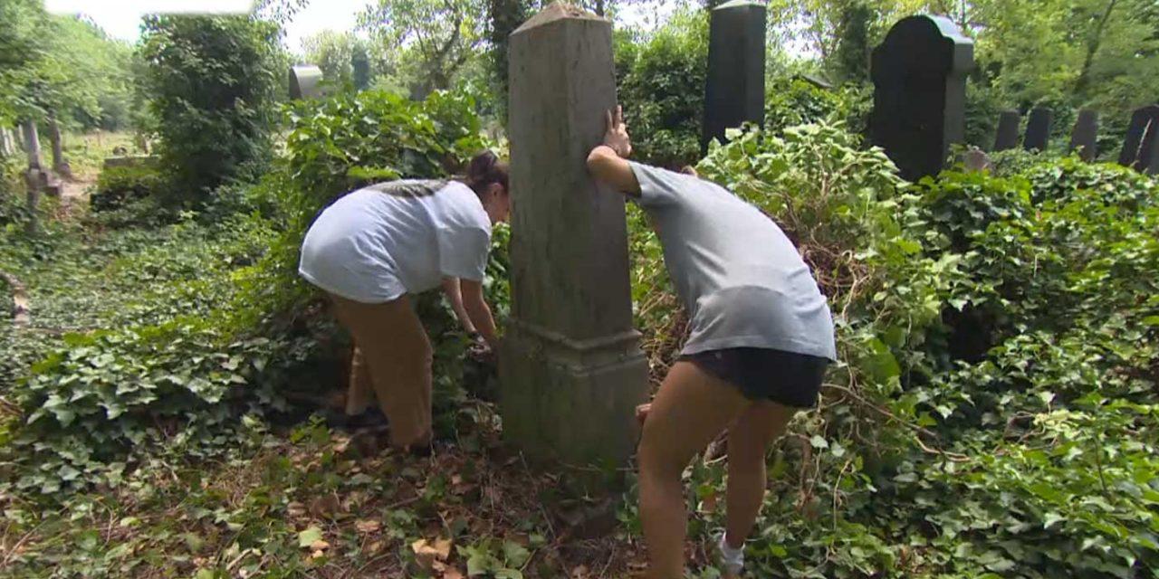 Budapest: Volunteers help restore one of world's largest Jewish cemeteries