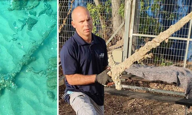 Israeli diver pulls 900-year-old Crusader sword from seafloor